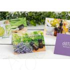 Assorted Greeting Cards with Envelopes (Set of 24)