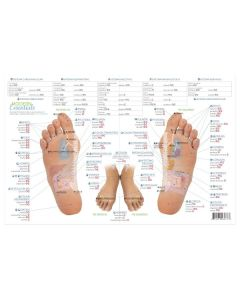 Spanish Modern Essentials Reflexology Chart, 10th Edition