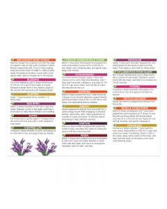 """Essential Oils For First Aid"" Oil Reference Card (Pack of 10)"