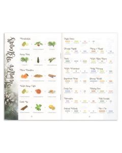 """Diffuser Blends to Live By"" Booklet—Expanded Edition (Pack of 10)"