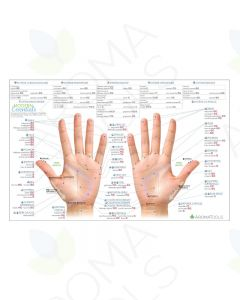 French Modern Essentials Reflexology Chart, 10th Edition