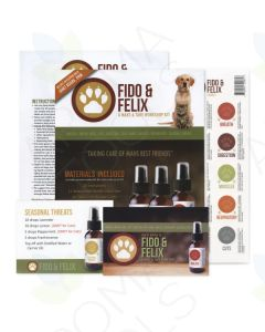 """Fido & Felix"" Make & Take Workshop Kit"