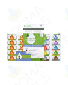 """Green Cleaning"" Make & Take Workshop Kit"