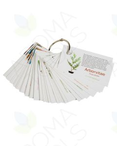 doTERRA Pass-Along Card Set on a Ring (60 Cards)