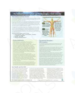 """The Endocannabinoid System and its Messengers: A Basic Overview"" Tear Pad (25 Sheets)"