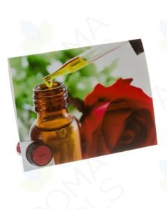 Romance Premium Essential Oil Sample Cards (Pack of 12)