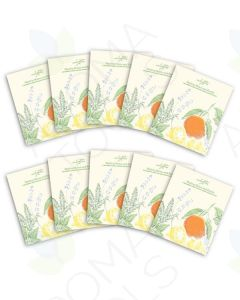 """Healing Home and Family"" Booklets (Pack of 10)"
