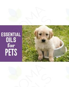 """Essential Oils for Pets"" Essential Oil Academy Digital Online Class"