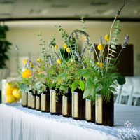 Essential Oil Class Decoration Idea